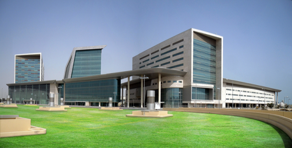 Hamad Bin Khalifa Medical City (Qatar Hospitals)
