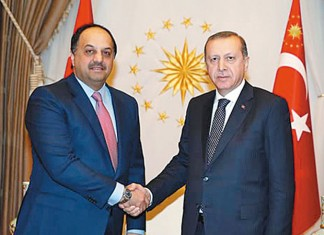 Defence minister meets Turkish president
