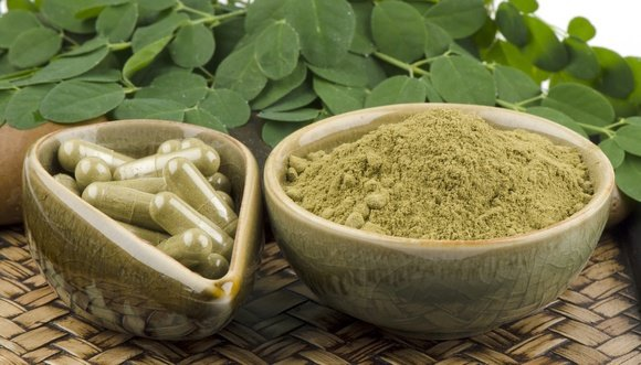 Health Benefits of Moringa Oleifera