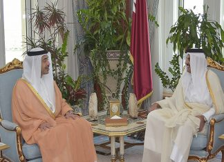 Emir Meets Foreign Minister of UAE