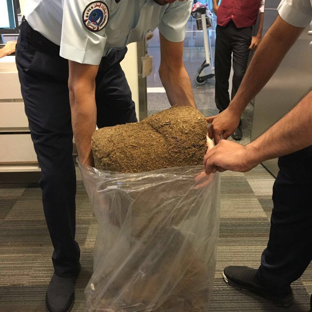 Qatar customs officials foil attempt to smuggle 20kg of marijuana through HIA